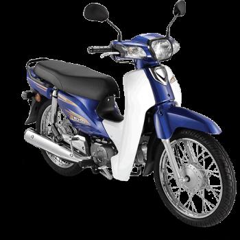 ex5-color-blue-spoke