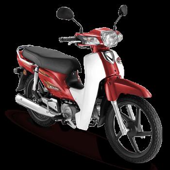 ex5-color-red-n